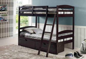 Fresno Twin-over-Twin Bunk Bed
